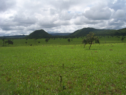 Land use in planalto grazing