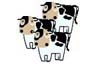 Cartoon Dairy Cows