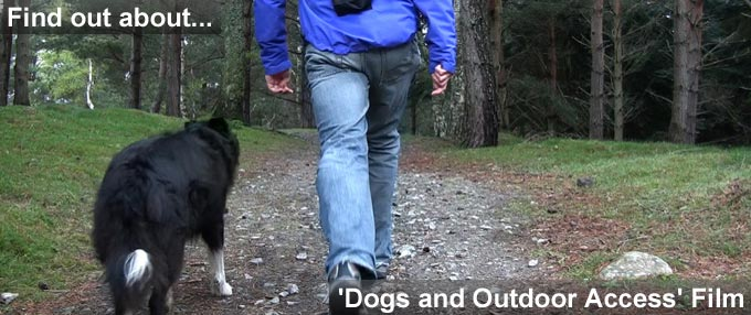 Pic of man walking dog and link to Dogs and Outdoor access video