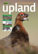 Summer 2008 Upland magazine and link